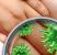 Pranje ruku - strategija protiv oboljenja